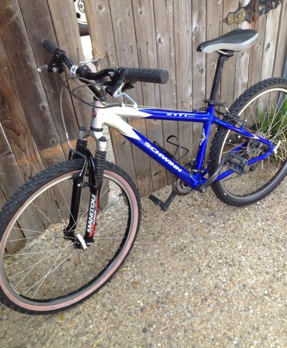 My bike! Doesn't it look pretty?