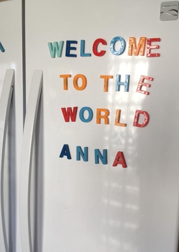 fridge Anna